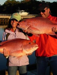 2008-redsnapper1